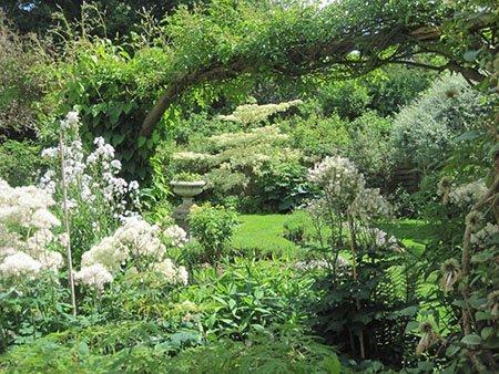 2 Chinthurst Lodge 450 - The National Garden Scheme - Find An Open Garden In Surrey