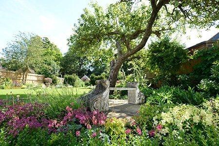 7 Rose Lane 450 - The National Garden Scheme - Find An Open Garden In Surrey