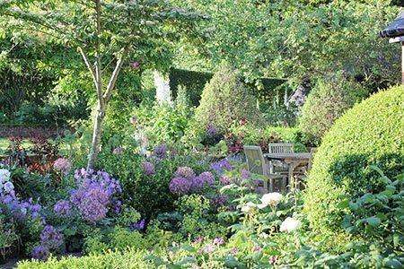 Little Court House 450 - The National Garden Scheme - Find An Open Garden In Surrey