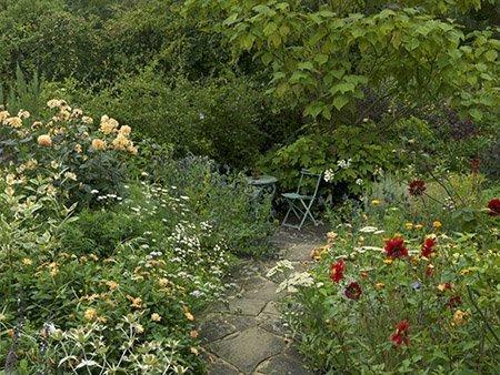 Woodbury Cottage 450 - The National Garden Scheme - Find An Open Garden In Surrey
